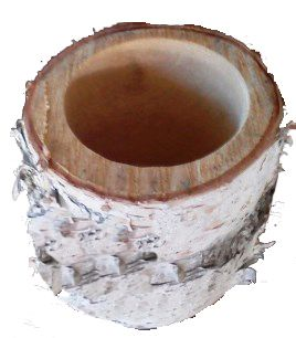 "4-5/8"" Birch Stump Planter"