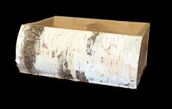 CBB01  Birch Slab Planter Box 12""