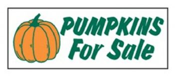 Pumpkins For Sale Banner