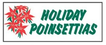 Holiday Poinsettias Banner