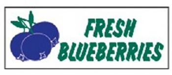 Fresh Blueberries Banner