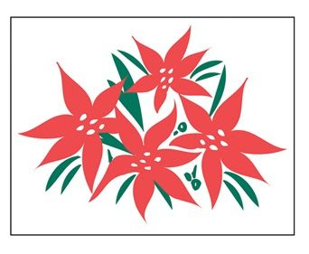 HPM15   Poinsettia Marketeer