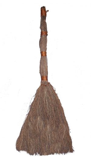 Twig Broom